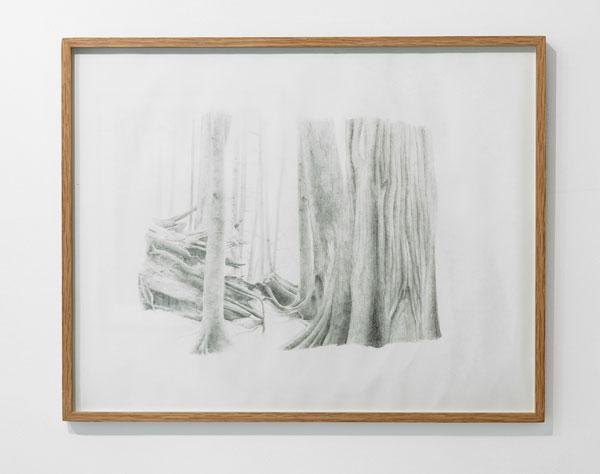Laurent Le Deunff, Autoportraits dans la nature