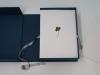 365, 2016 - 2017, herbier, planches de 365 trèfles à quatre, cinq et six feuilles sur papier de conservation, boîte d'archive, 30 x 22 x 11 cm, pièce unique