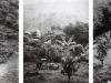 Estenopeicas rurales, Famille Barretto Bonilla - San Luis De Ocoa, 2015, tryptique, photographies sténopées, noir et blanc, 42 x 52 x 3 cm avec cadre chaque pièce, édition de 5 + 2 EA