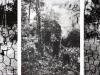 Estenopeicas rurales, Famille Rincon - San Luis De Ocoa, 2015, tryptique, photographies sténopées, noir et blanc, 42 x 52 x 3 cm avec cadre chaque pièce, édition de 5 + 2 EA