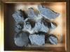 Piedra de ceniza indurable, como un error de Amalgama, 2014 - 2016,  cendre, poudre, dimensions variables, pièces uniques