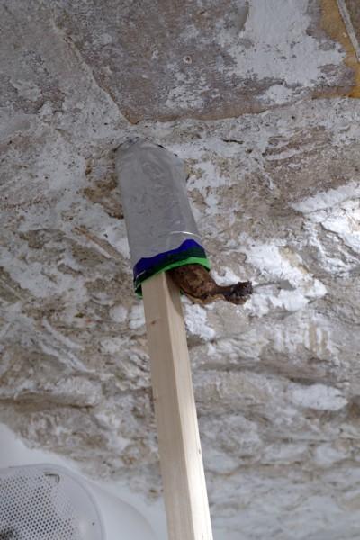 Standard and Poor's, Fer de lance, Banane-bronzo I, Julien Creuzet - Octave Rimbert-Rivière, 2013, aluminium, bronze, wood, plastic, 237 x 4,3 cm, unique piece, photo © Aurélien Mole