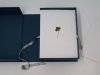 365, 2016 - 2017, herbarium, sheets of 365 four leaves clovers, five and six clover leaves on conservation paper, archive box, 30 x 22 x 11 cm, unique piece