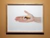 Exposition 4, 2012, photographie couleur, tirage lambda, encadrée, 38 x 50 cm, vue d'exposition Les objets qui parlent, galerie Dohyang Lee, photo © Aurélien Mole