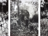 Estenopeicas rurales, Family Rincon - San Luis De Ocoa, 2015, tryptich, pinehole camera photographies, black and white, 42 x 52 x 3 cm with frame each piece, edition of 5 + 2 AP