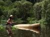 À Tarapoto, un Manati 1. Le Voyage, 2011, installation Video HD, couleur, son, 18'38'', édition de 5 + 2 EA. Prix Multimédia des Fondations des Beaux Arts 2011. Loop Award 2014. Collection Fonds Régional d'Art Contemporain PACA, France