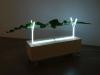 Neon, 2016, neon, leaf plant, 3 mm plywood, urethane casters, 30 x 120 x 60 cm, unique pieces