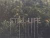 Still life, 2017, mosquito net, white cotton thread, variable dimensions, unique piece, installation in Nohwa Island, Wando, South Korea. Documentary video, color, sound, 01'01''
